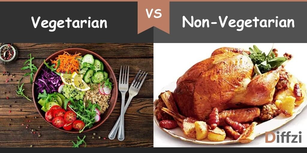 Vegetarian Vs Non Vegetarian What Is The Difference Diffzi