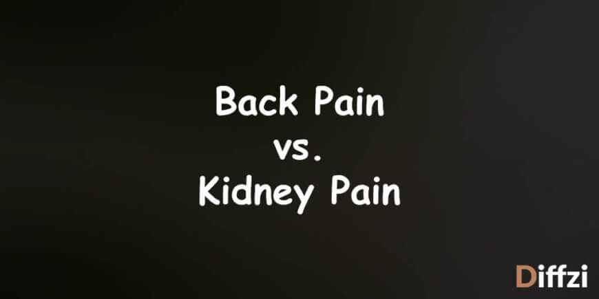 Back Pain vs. Kidney Pain