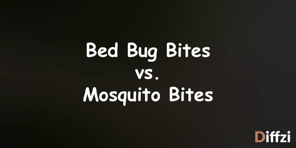 Bed Bug Bites vs. Mosquito Bites