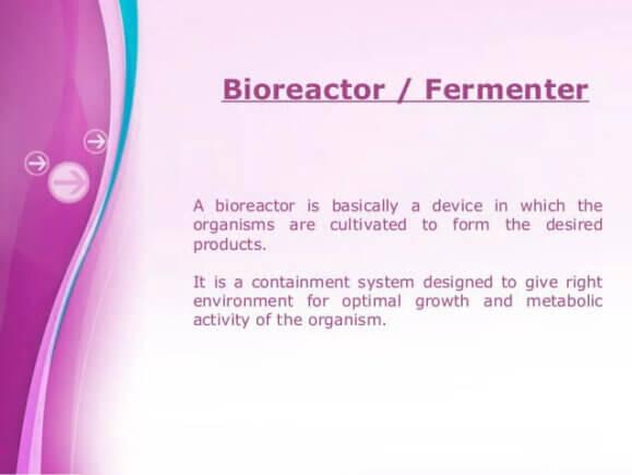 Bioreactor vs. Fermentor