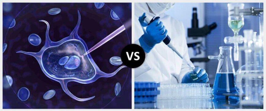 Genetic Engineering vs. Biotechnology