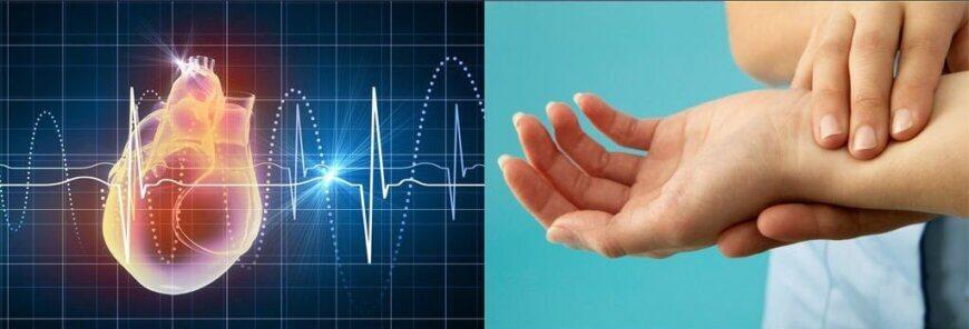 Heart Rate vs. Pulse Rate e1549055761436