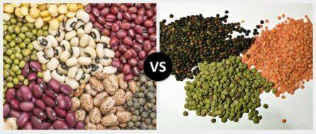 Legumes vs. Lentils