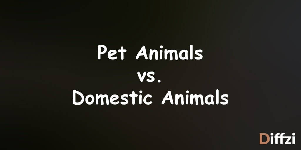 Pet Animals vs. Domestic Animals