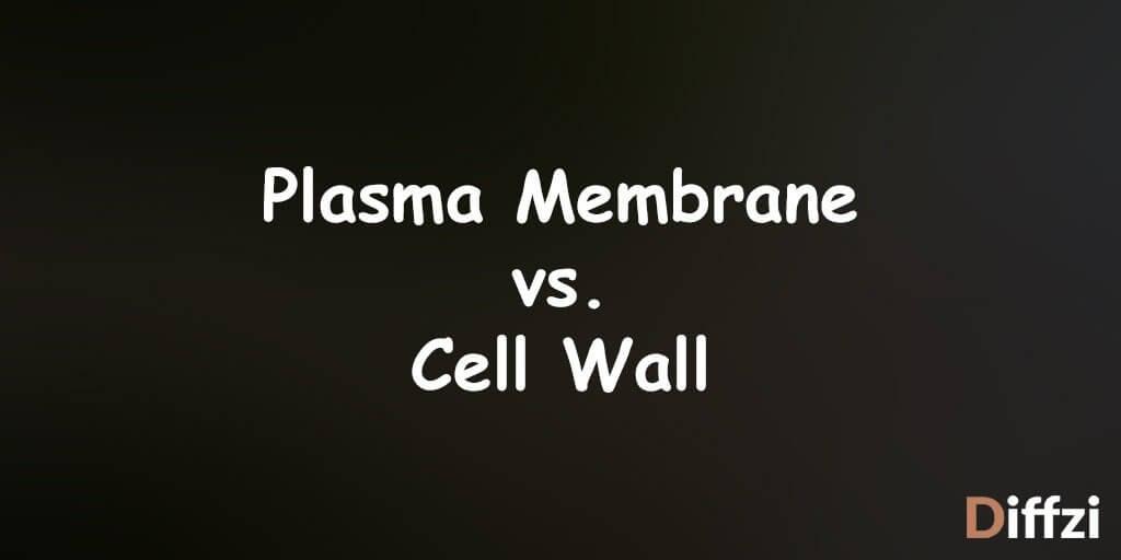 Plasma Membrane vs. Cell Wall