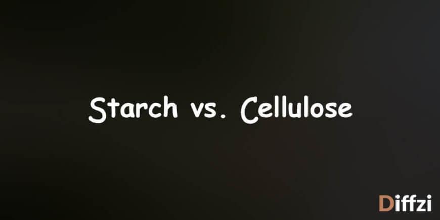 Starch vs. Cellulose
