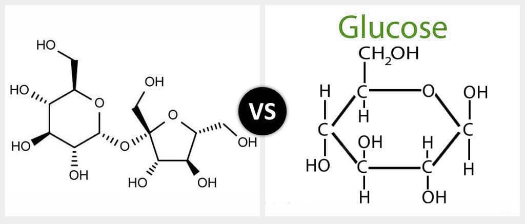 Sugar vs. Glucose