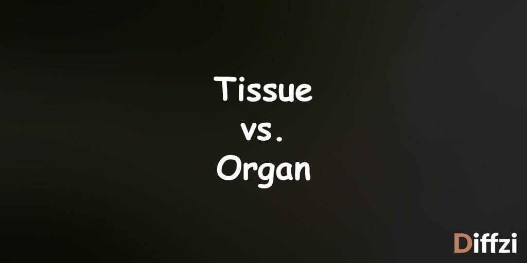 Tissue vs. Organ