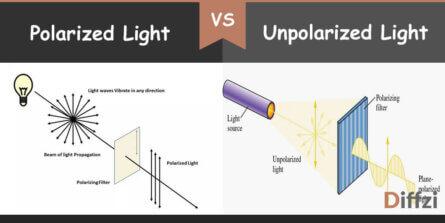 polarized light vs unpolarized light
