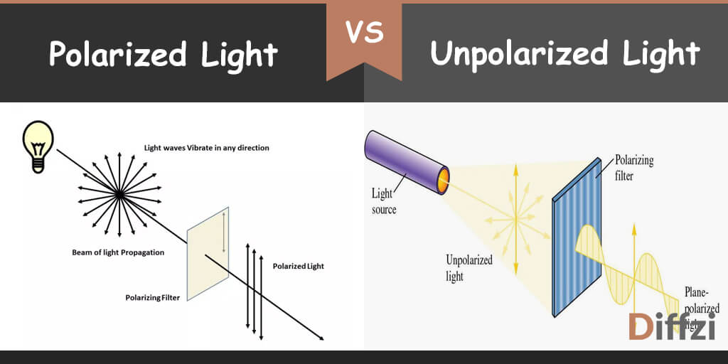 polarized light vs unpolarized light
