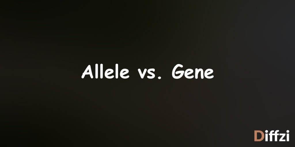 Allele vs. Gene