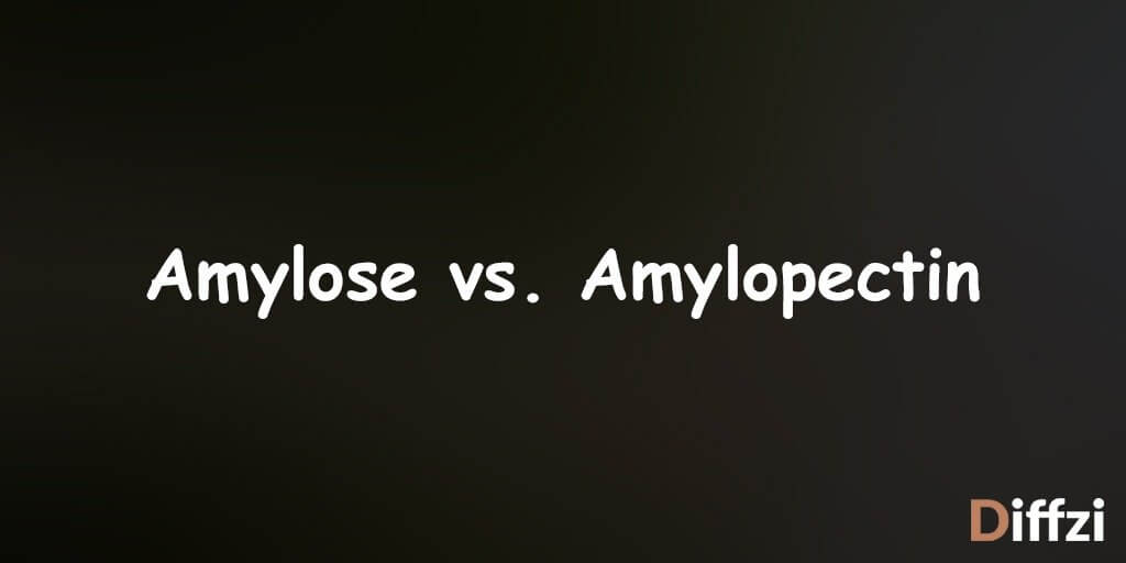 Amylose vs. Amylopectin