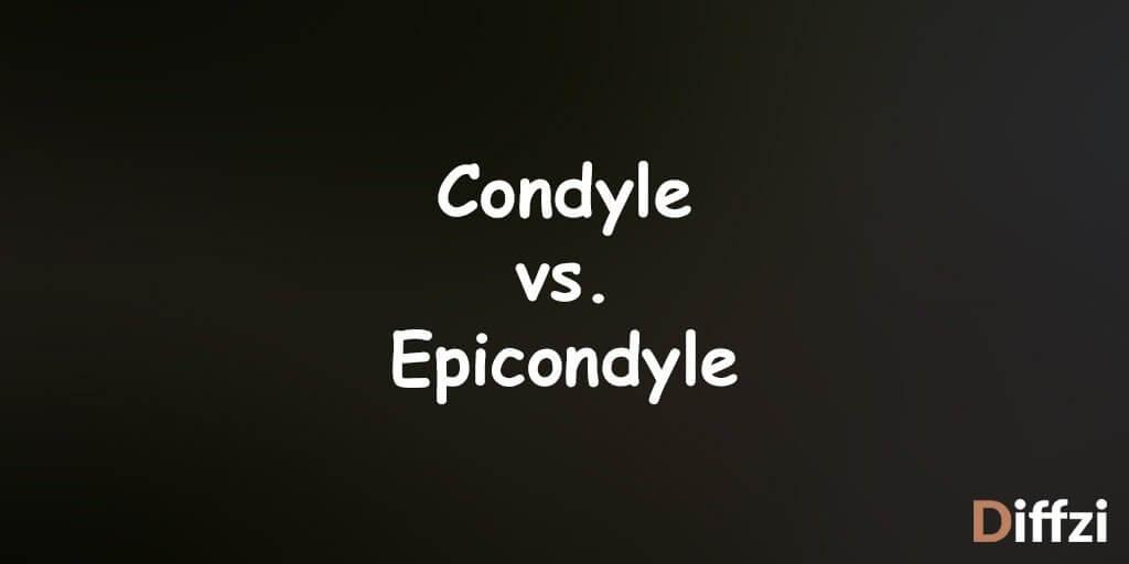 Condyle vs. Epicondyle