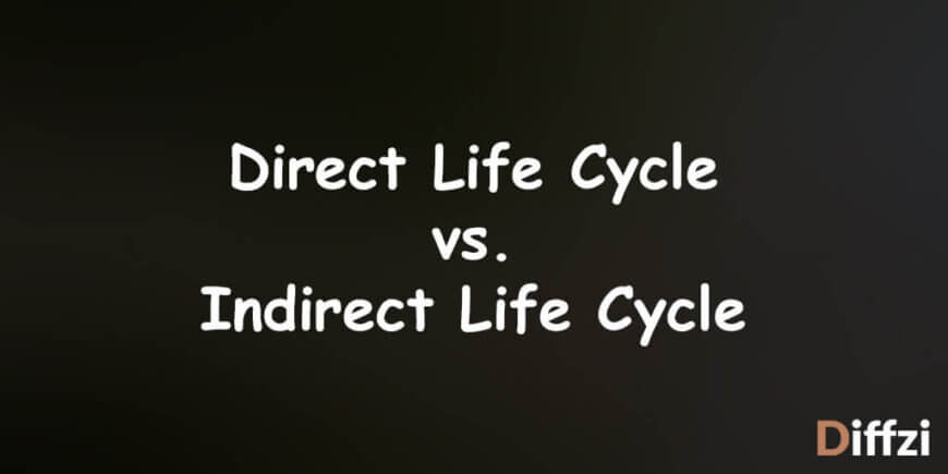 Direct Life Cycle vs. Indirect Life Cycle