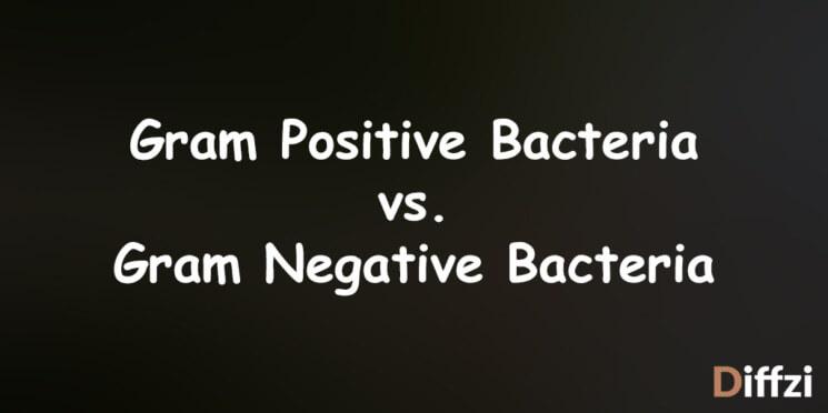 Gram Positive Bacteria vs. Gram Negative Bacteria