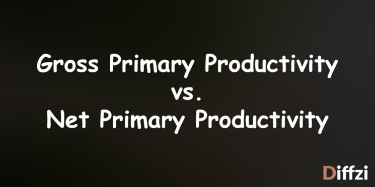 Gross Primary Productivity vs. Net Primary Productivity
