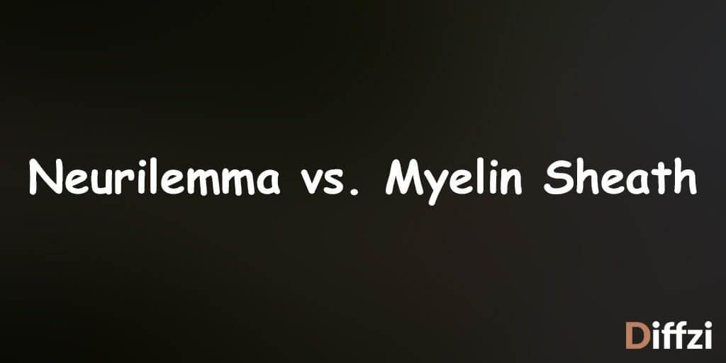 Neurilemma vs. Myelin Sheath