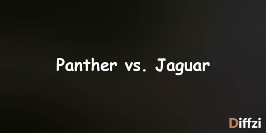 Panther vs. Jaguar