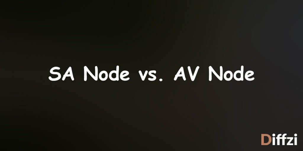 SA Node vs. AV Node