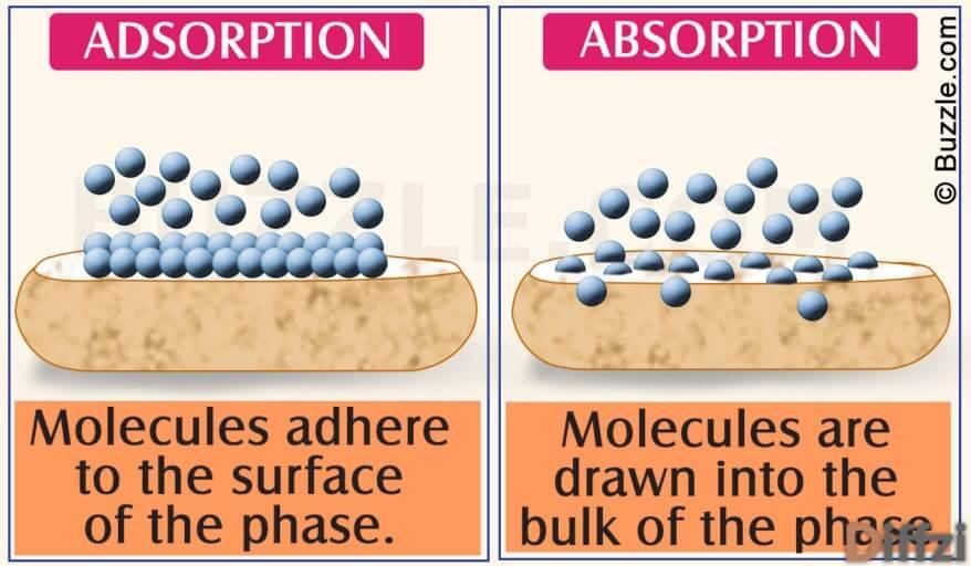 Absorption vs. Adsorption