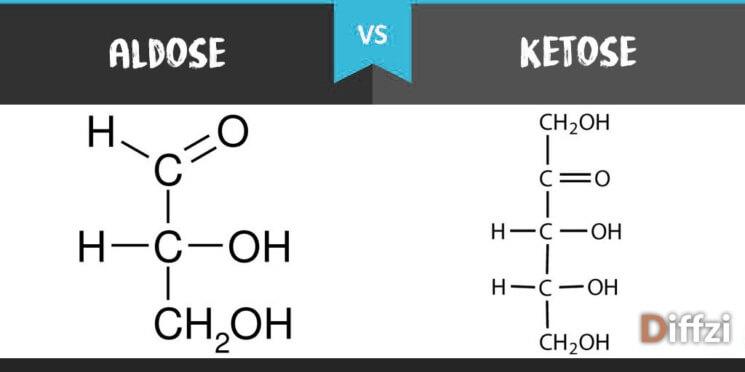 Aldose vs. Ketose