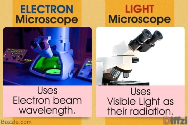 Light Microscope vs. Electron Microscope
