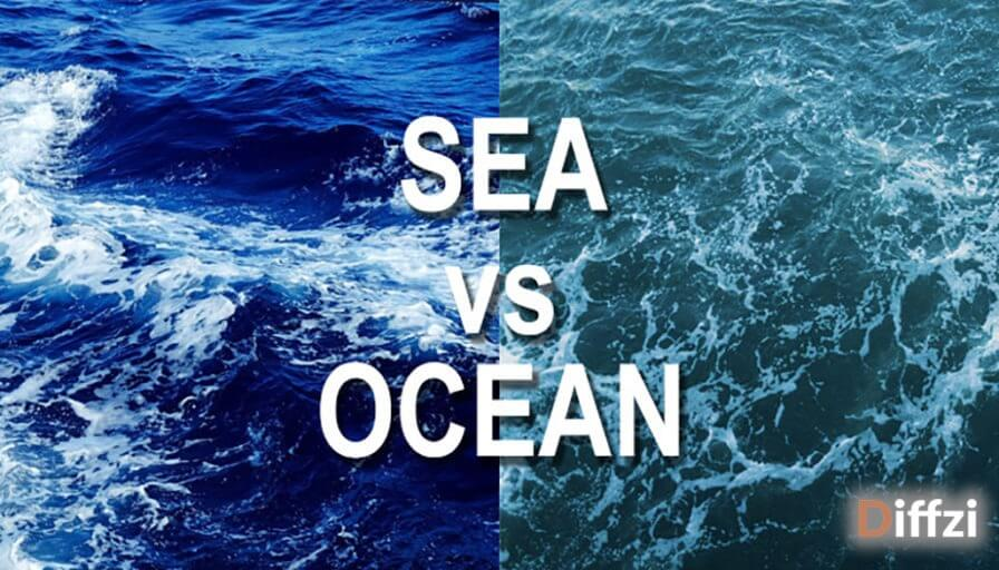 Sea vs. Ocean