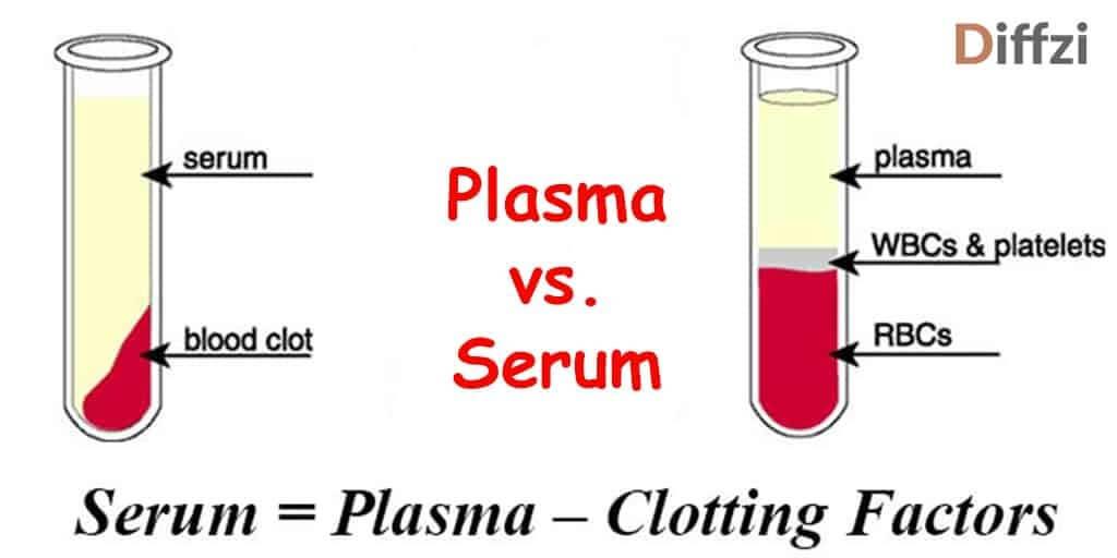 Plasma vs. Serum