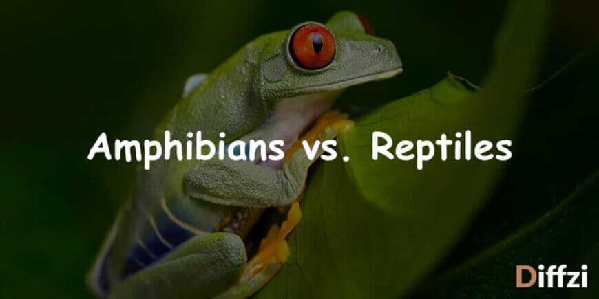 Amphibians vs. Reptiles