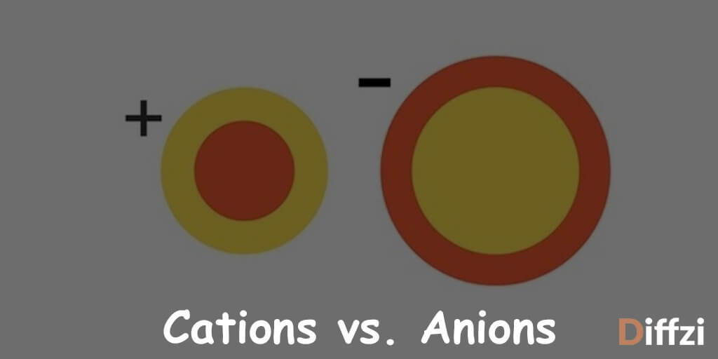 Cations vs. Anions