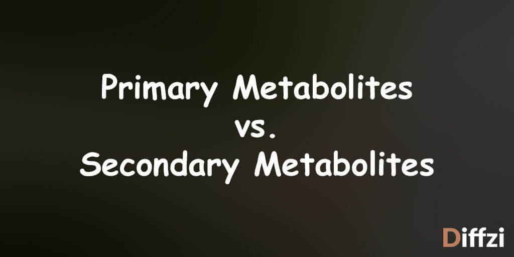 Primary Metabolites vs. Secondary Metabolites
