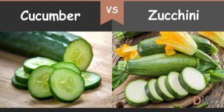 cucumber vs zucchini