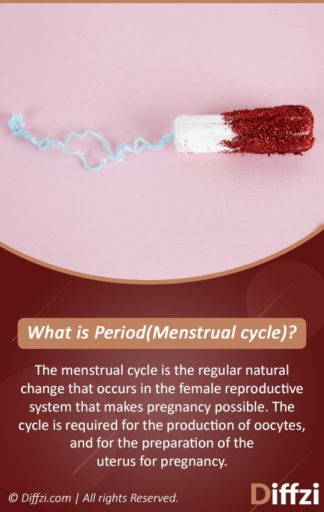 What is PeriodMenstrual cycle