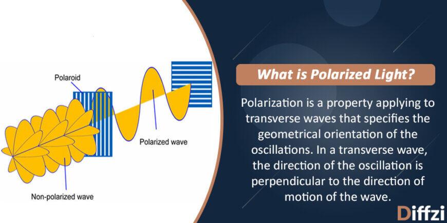 Polarized Light