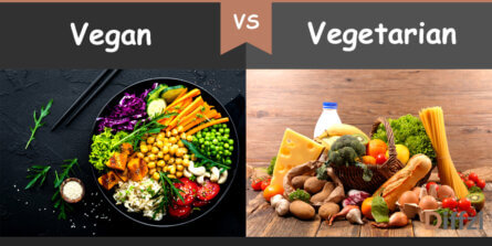vegan vs vegetarian